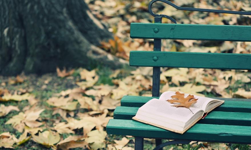 Лучшее лекарство от осенней хандры - хорошая книга