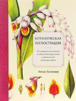 Ботаническая иллюстрация